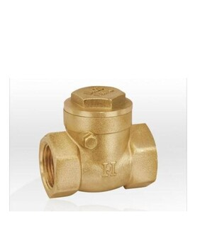 BRASS SWING CHECK VALVE (HEAVY DUTY)